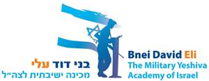 logo_bnei_david